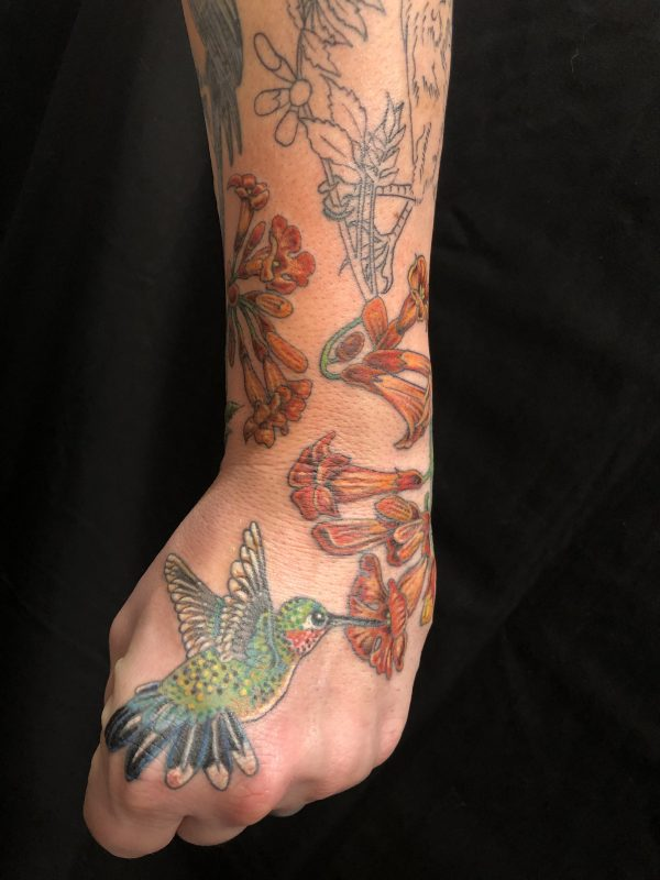 Clint Hummingbird