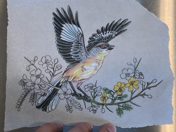 Drawing Mockingbird