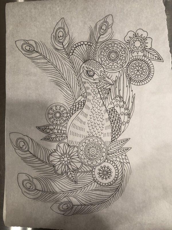 Drawing Peacock