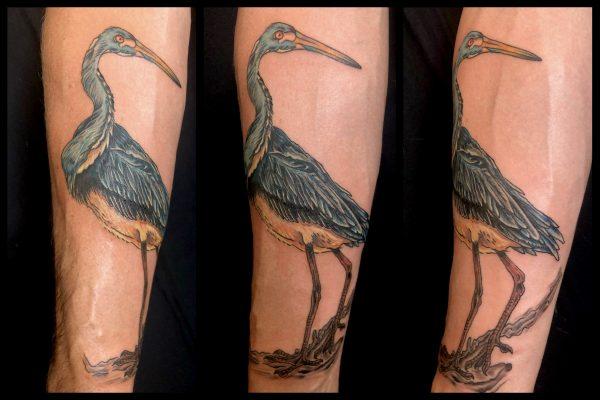 Heron, James